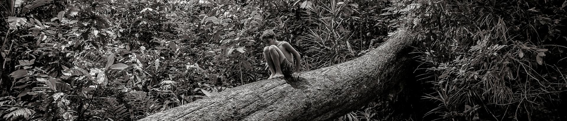 Enfant songeur sur un arbre Header 3